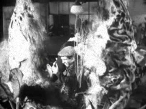 O.E.E. presents Little Shop of Horrors