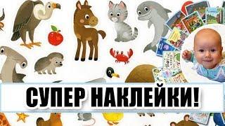 """НАКЛЕЙКИ в папке """"Животные"""" И ИГРЫ С НИМИ. Обзор Годовёнок"""