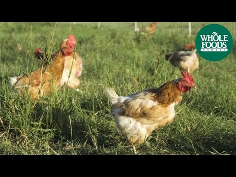 Coyote Creek Farms | Producer Profiles | Whole Foods Market