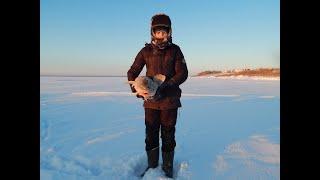 Рыбалка 8е Января 2021 54