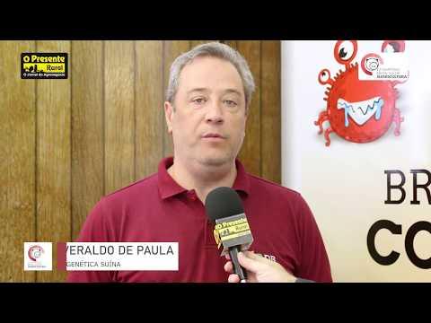 DB Genética Suína faz sua análise referente ao 12º Simpósio Brasil Sul de Suinocultura