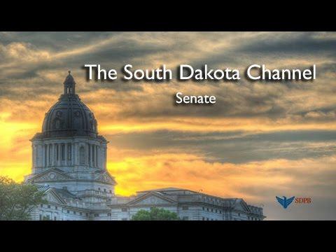 South Dakota Senate - L.D. 29