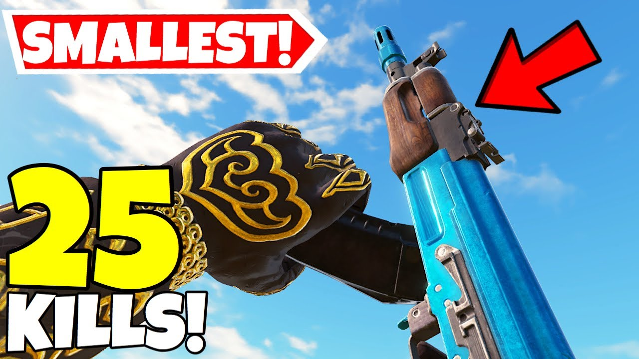 WORLD'S SMALLEST AK-47 IN CALL OF DUTY MOBILE BATTLE ROYALE! thumbnail