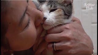 Este gato desagradable hace 'esto' para vengarse de su mujer todas las noches | Kritter Klub