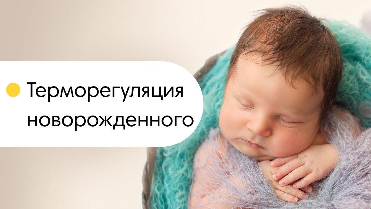 Терморегуляция новорожденного. Бурый жир младенца. Как ...