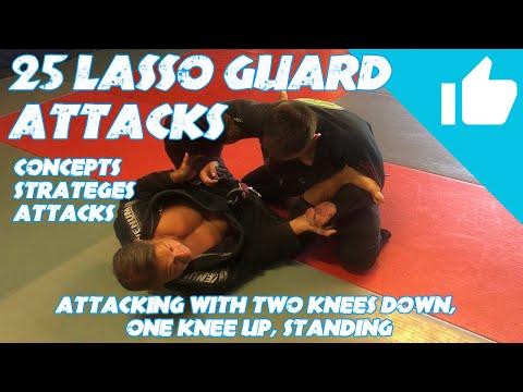 Lasso Guard: Twenty-Five (25) Strategies and Attacks