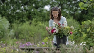 Pick your own flowers at Blooming Green