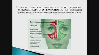 Анатомо-физиологические особенности носа и око-вых пазух в воз-нии риносинуситов. Кудайбергенова С.Ф