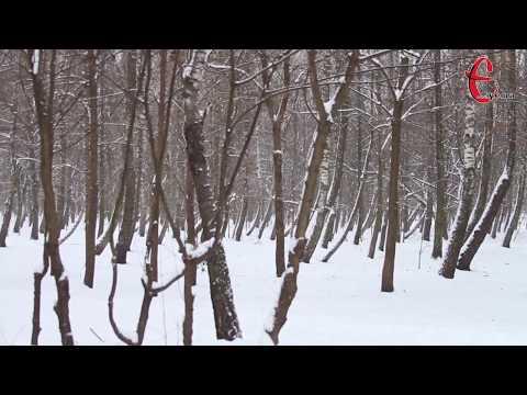 gazeta ye.ua: Погода на 19 грудня / Хмельницька область