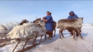 Энцы  Носители редчайшего языка | Редкие люди