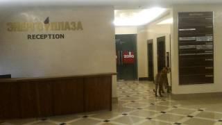 Тигр зашел за покупками в ТЦ Энергоплаза в Хабаровске