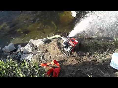 Gold dredge pump break in on pilchuck river w/ SIR 509
