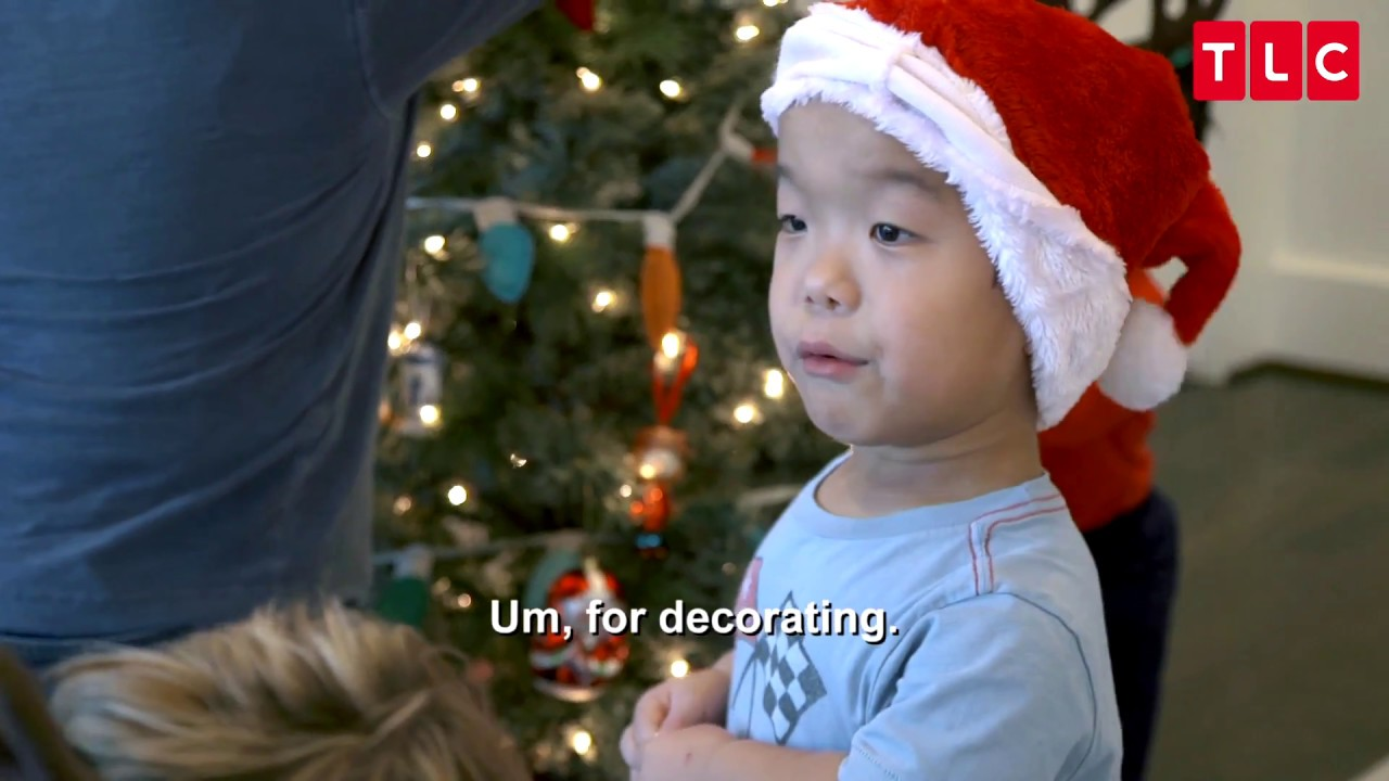 The Little Couple' Cancellation Concerns Swirl As Dr  Jen Arnold