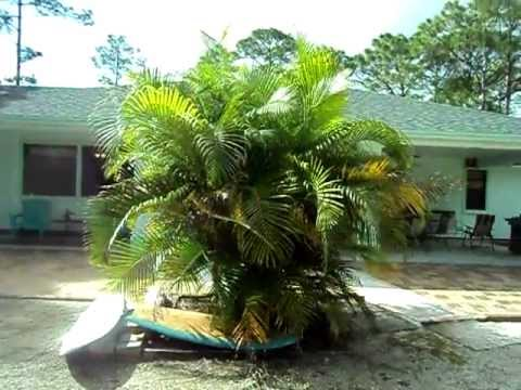 Vacation Mobile Homes For Sale New Smyrna Beach Floida