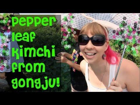 Gochu Leaf Kimchi from Gongju