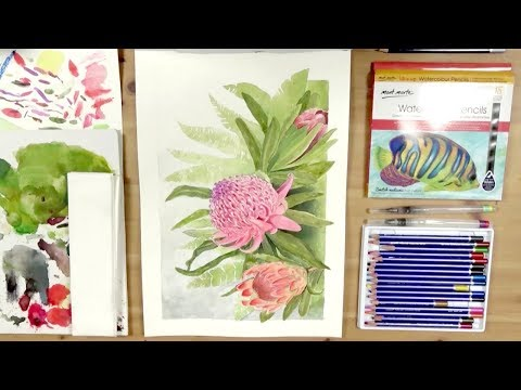 How to Use Watercolour Pencils to Paint Native Australian Flowers