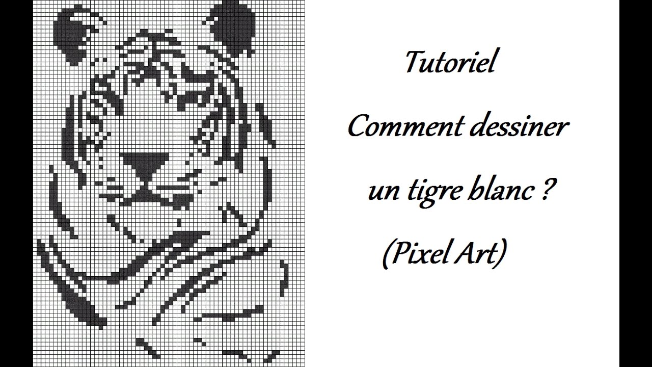 Tutoriel Comment Dessiner Un Tigre Blanc Youtube
