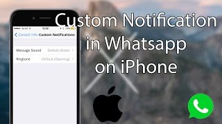 This quick video will guide you with the process of changing / setting a custom notification tone on whatsapp iphone. read more http://www.igeeksblog.c...