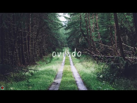 Blind Pilot - Oviedo (Lyrics)