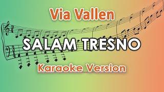 Via Vallen - Salam Tresno (Karaoke Lirik Tanpa Vokal) by regis