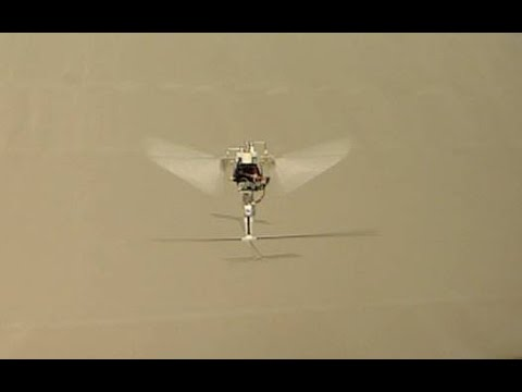 Robotic Hummingbird: A Novel Bio-inspired Hover-Capable Flapping-Wing Micro Air Vehicle