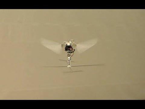 Robotic Hummingbird: A Novel Bio-inspired Hover-Capable Flapping-Wing Micro Air Vehicle