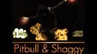 Pitbull ft. Shaggy - Fired up (Dj Lukas Remix