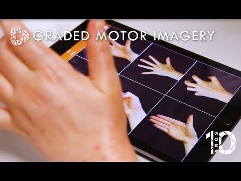 Ver en youtube el video Graded Motor Imagery (GMI)