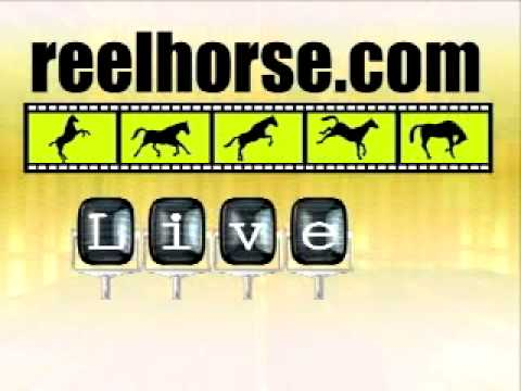 ReelHorse - Live Streaming Video from YouTube · Duration:  6 seconds  · 634 views · uploaded on 12.10.2009 · uploaded by ReelHorse