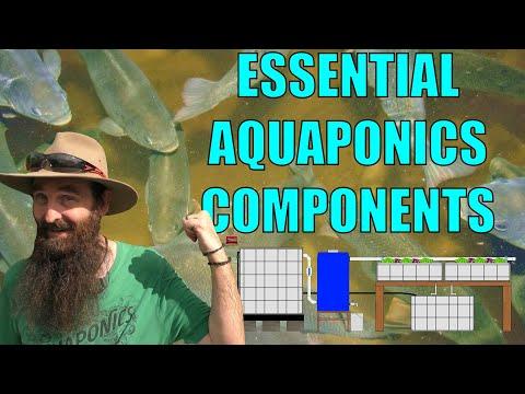 Aquaponics System Design - 9 Essential Components