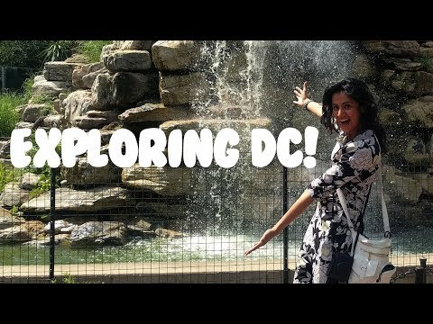 Exploring DC