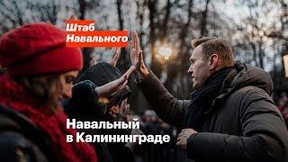 Навальный в Калининграде