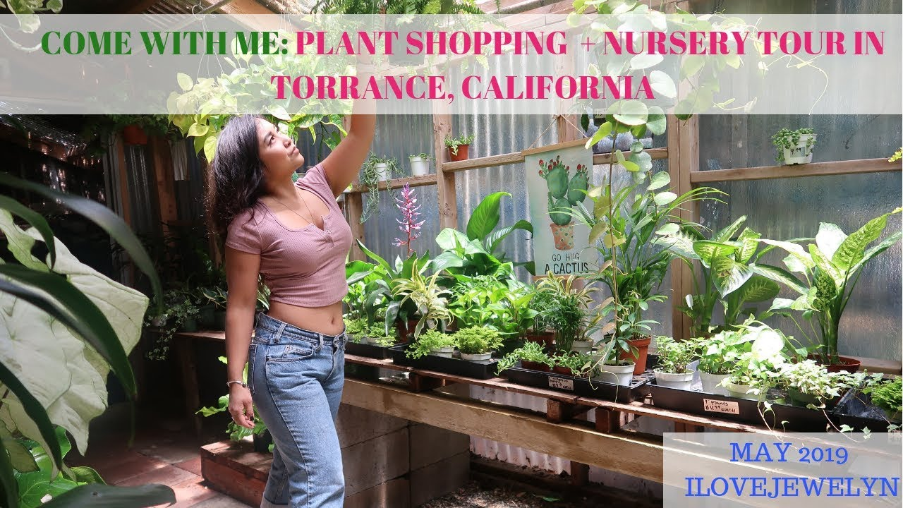 Plant Ping Tour Torrance Ca