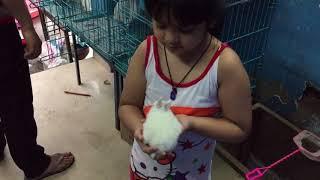 Nasreen at pet shop ( So Cute Rabbit )