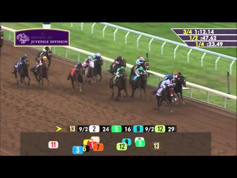 2015 Sentient Jet Breeders' Cup Juvenile (G1) - Nyquist