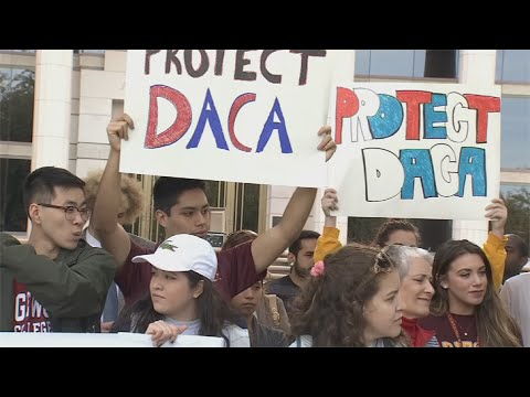 Arizona's state universities still offering in-state tuition to DREAMers