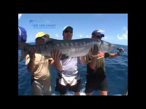HUGE BARRACUDA tail slaps Arno in the face - funny video.