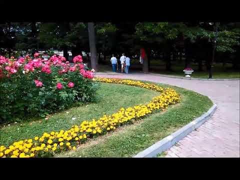 Цветочный ансамбль Екатерининского парка. Парки Москвы. Flower ensemble of Catherine Park in Moscow.