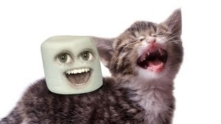 Annoying Orange - Marshmallow Pic Contest Winners!