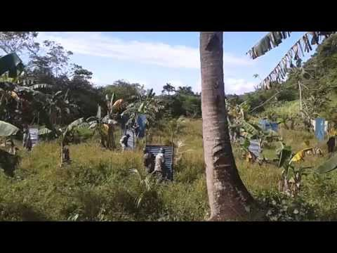 malay airsoft tactical assault group [aklan, philippines] scene 2.2