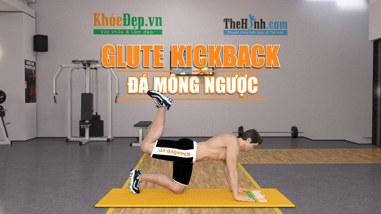 Bài tập mông Glute Kickback giúp mông săn chắc đầy nam tính