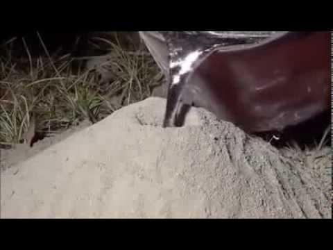 شاهد ما يحدث عندما تصب الالمنيوم السائل داخل عش النمل سبحان الله