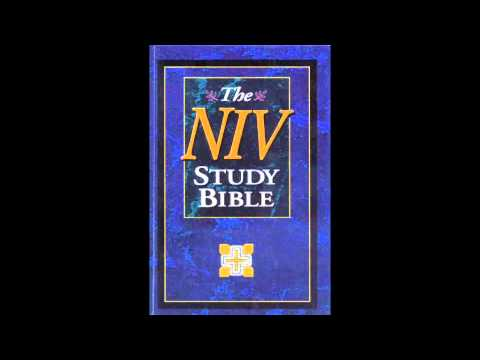 The Book of Psalms (NIV Audio Bible Non Dramatized)