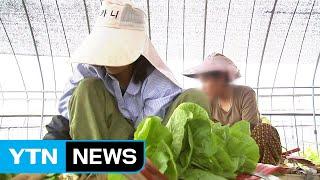 외국인 '최저임금 인상'...중소업체·농…