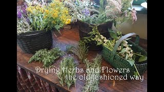 Drying Herbs and Flowers the Old Fashioned Way