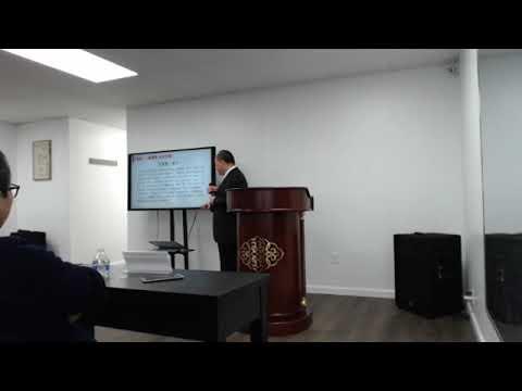 《李毅纽约演讲视频:北平方式  统一台湾  一国两制  台湾方案》