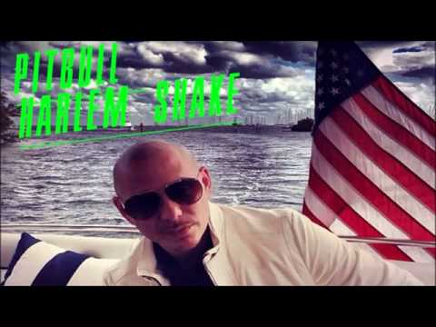 PITBULL - Harlem Shake Lil Wayne Diss (Welcome 2 Dade County)