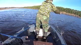 Первые дни рыбалки сетями Че то не прет