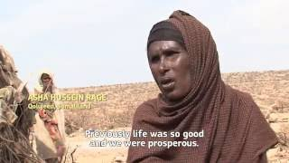 El Niño in Somaliland: Millions impacted by severe drought
