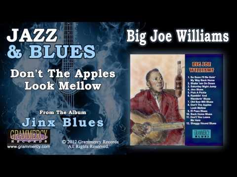 Big Joe Williams - Don't The Apples Look Mellow